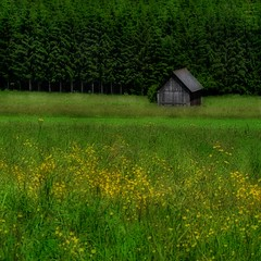 Styria in May | by regina_austria