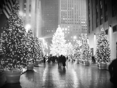 """Rockefeller Plaza - Christmas Tree 2"" 