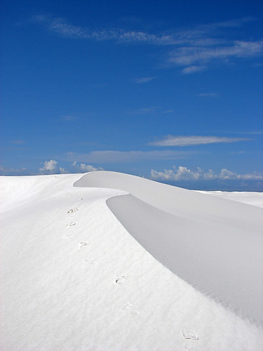 Day 6 // White Sands | by Eelke de Blouw