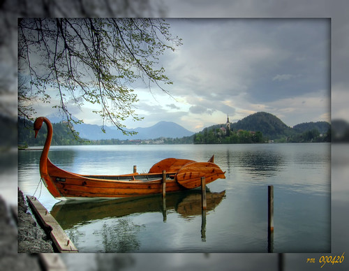 1549 Wooden Swan | by -salzherz-
