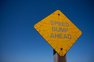 Speed Bump Ahead | by veggiefrog