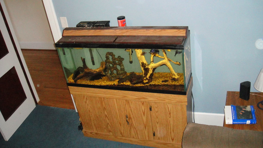 Fish Tank In Man Cave Xnzerox Flickr