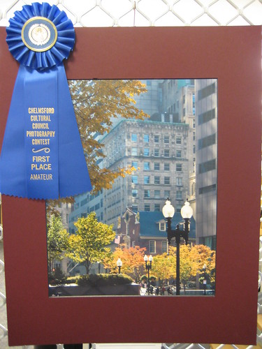 Winterfest 2009 Winner - Amateur | by chelmsfordpubliclibrary