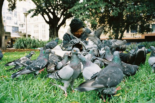 Homeless with Pigeons | by dolspics
