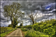 To the Footpath. | by Pat Dalton...