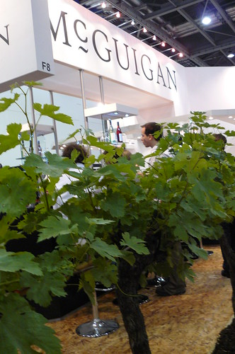 vineyard in the LIWF | by Winesleuth