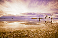 Salton Sea Sunset | by Brian Auer