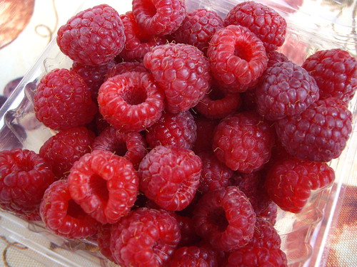 Red Raspberries from Rhoads Farms | by swampkitty