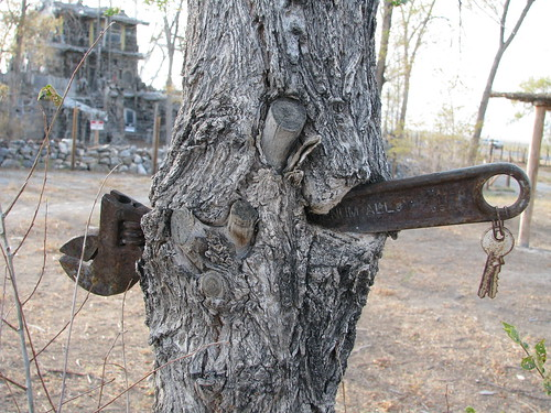 tree wrench | by mooncowboy