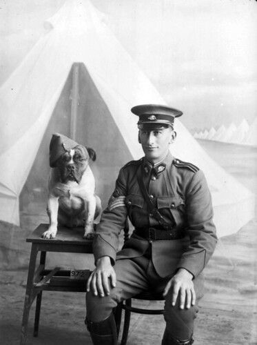 Staff Sergeant Major Morgan and dog, 1915 | by Australian War Memorial collection