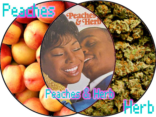 Make Your Own Venn Diagram: 20090204 - Venn Diagram - Peaches 6 Herb | After seeing the u2026 | Flickr,Chart