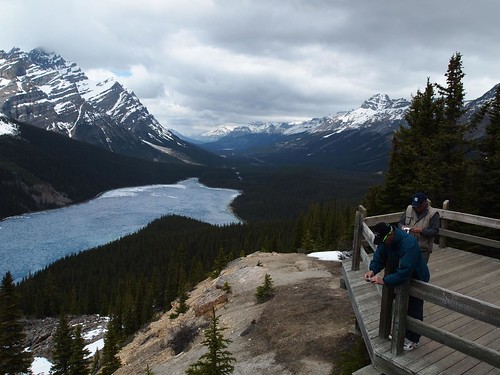 Bow Summit and Peyto Lake | by coolinsights