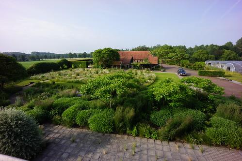 Piet anja oudolf 39 s private garden designer piet for Piet oudolf private garden