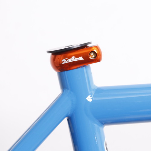 SALSA CYCLES / COLOSSAL 2 / 2013