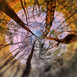 Playing with Nature - Tinyplanet | by Andy Blackwell Photography