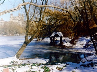 New York Central Park | by Jeanne Menjoulet
