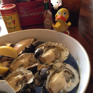 @GeoDuckie at Hole in the Wall, Apalacicola, FL ready to share these oysters w/ me for lunch | by ghbrett