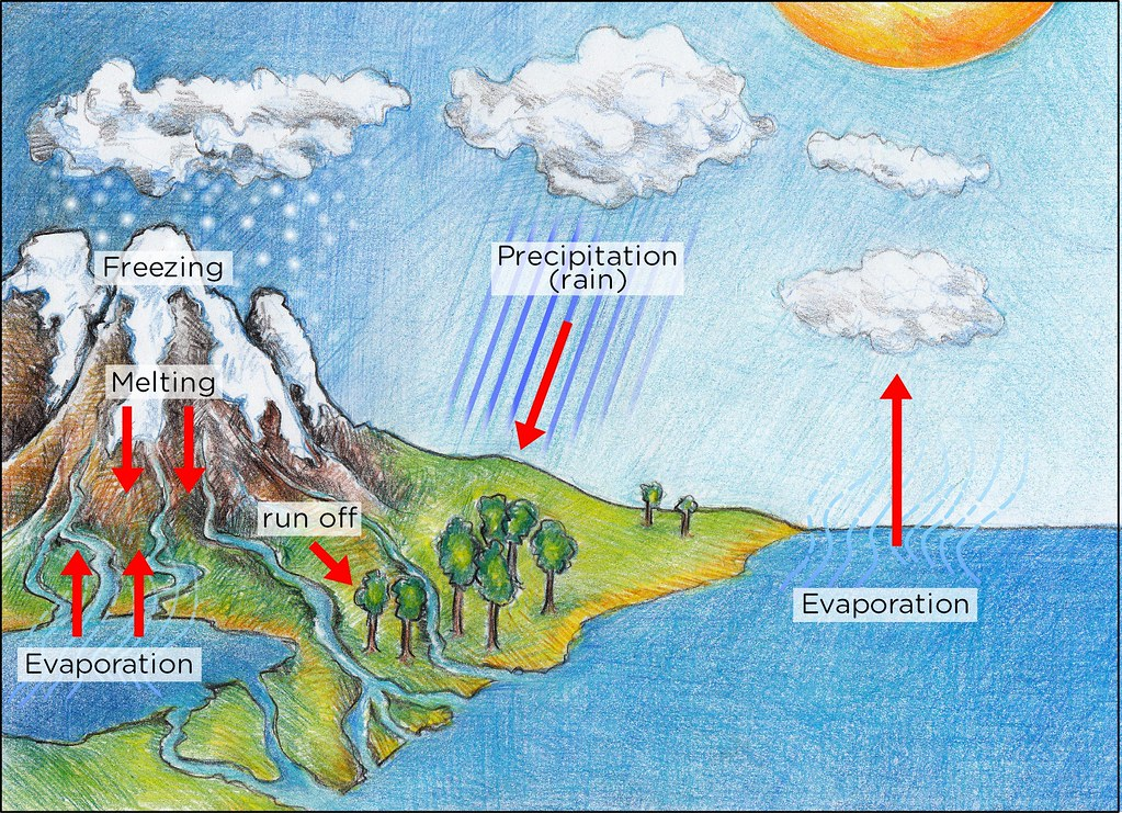 Water cycle illustration used in gr 7 9 natural sciences flickr water cycle by siyavula education water cycle by siyavula education ccuart Image collections