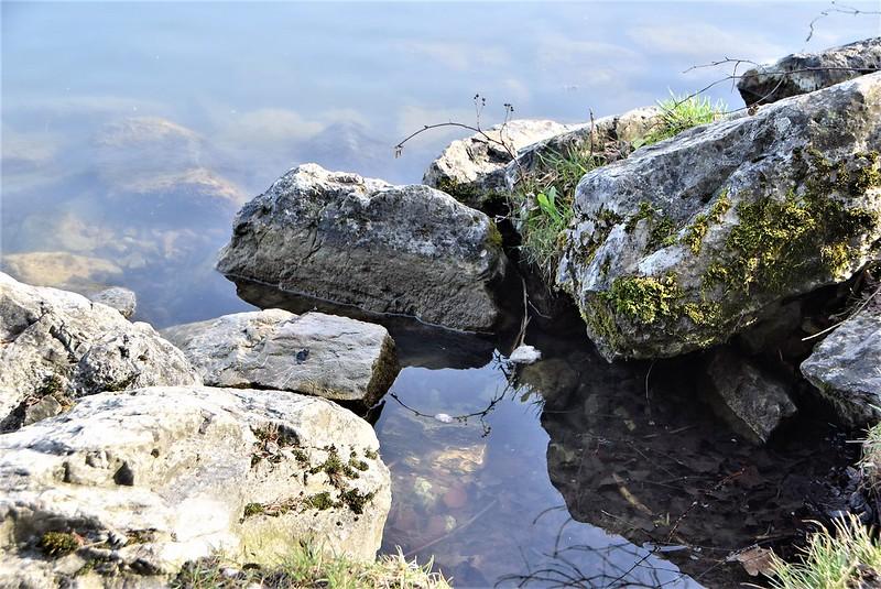 River Aar 12.03 (4)