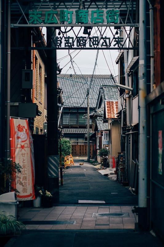 SetoSuehiro_Shotengai_01
