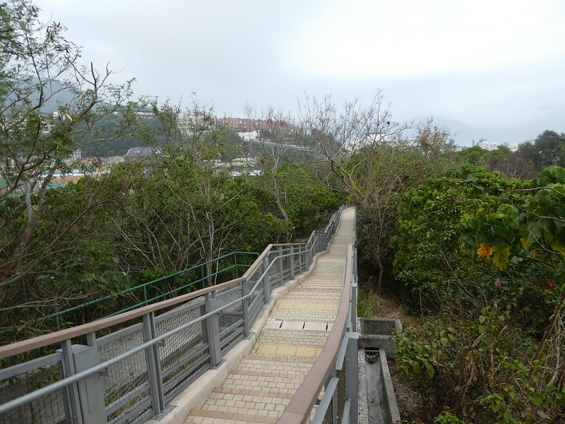 Nature trail boardwalk, Stanley, Hong Kong