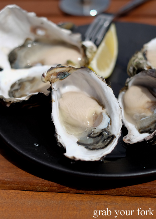 Bruny Island oysters at Get Shucked on Bruny Island in Tasmania