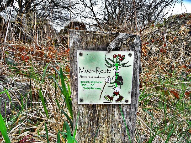 Moor-Route Kranzbruch Simmerath 07_a