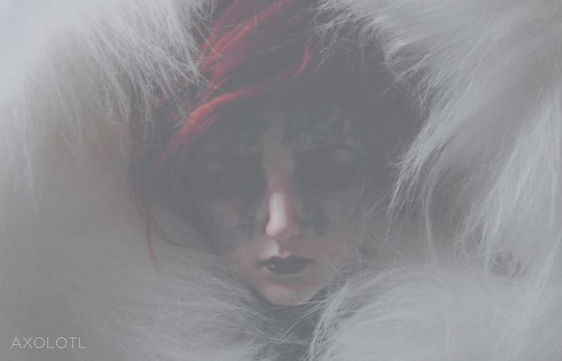 [Meetdoll Sirius] * Is winter ending? * p.2 - Page 2 33097160461_473b3d586b_c
