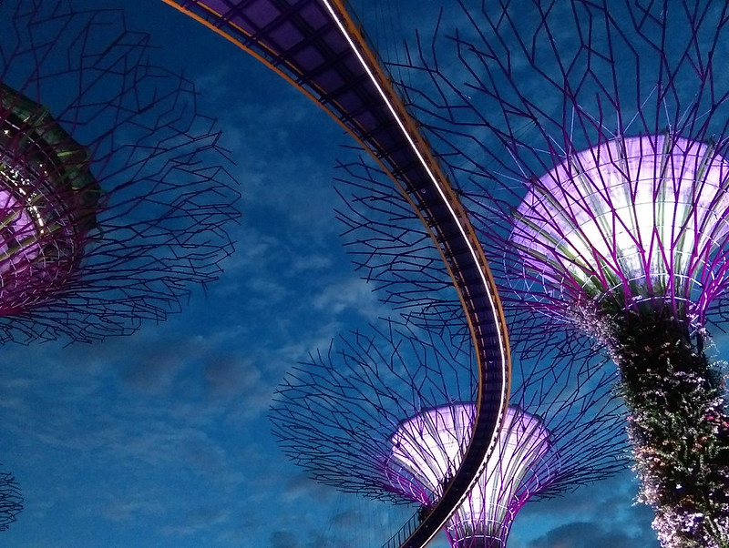 gardens by the bay singapore - supertree