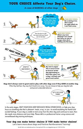 Stop Dog Barking Sensor