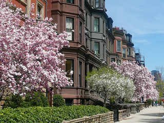 Commonwealth Avenue in Spring - Boston | by Massachusetts Office of Travel & Tourism