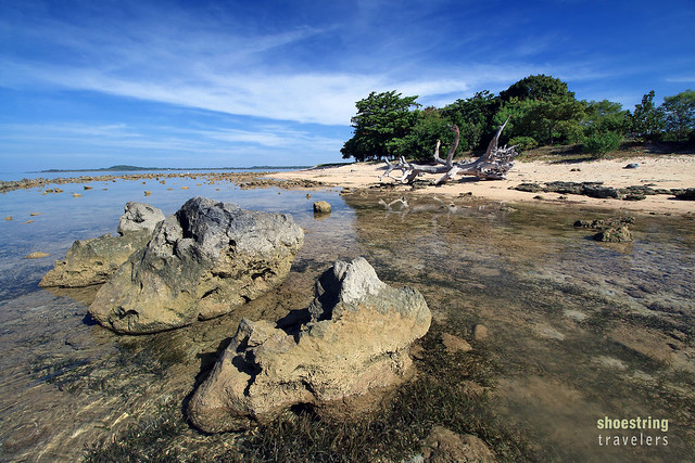 rocky beach at Potipot Island where a variety of marine fauna may be observed