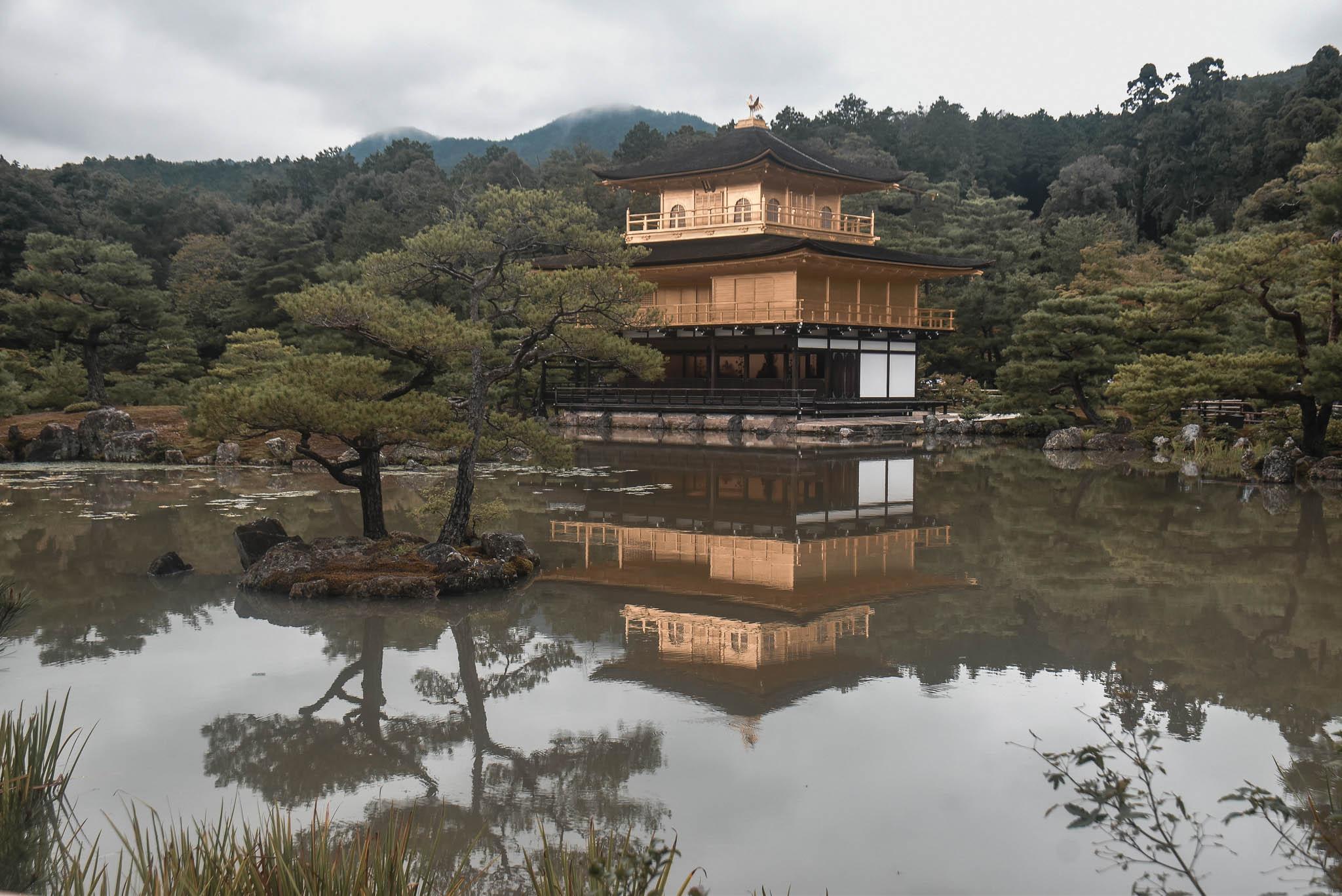 arashiyama 49 (1 of 1)