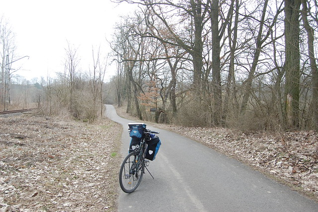 Bild: ein asphaltierter Weg zwischen Dahmsdorf und Waldsieversdorf im Wald
