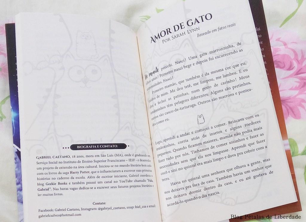 gabriel-caetano, livro, antologia, bichanos, gatos, fonzie