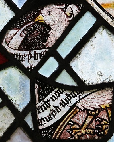 Which came first, the chicken or the scroll?--15th C. stained glass, the Chapel of St Nicholas, Gipping, Suffolk, England | by Spencer Means