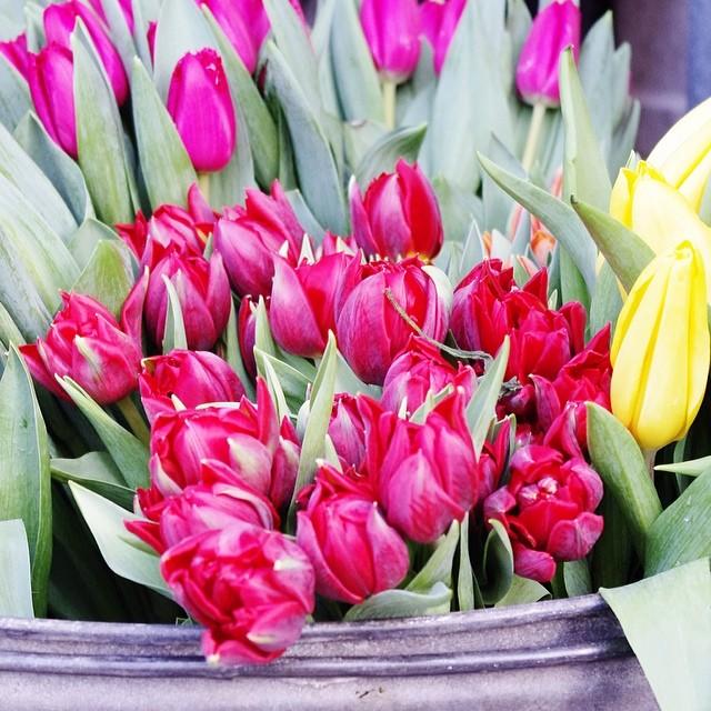 Spring Finally Flowers Flowermarket Libertylondon Lon Flickr