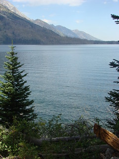 07 Jenny Lake