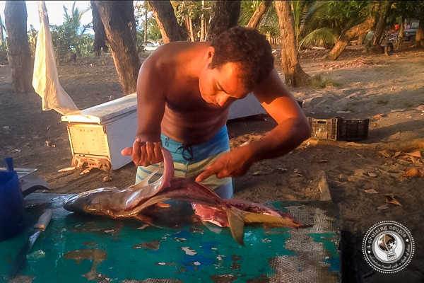 Fresh Fish at Pilon Beach near Pavones Costa Rica