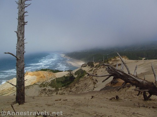 Looking north from the top of the sand dune at Cape Kiwanda, Oregon
