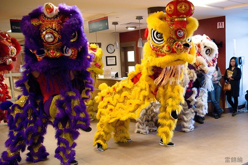 Name: jing-wo-lion-dance-007-20170211 | by goldenjadephoto