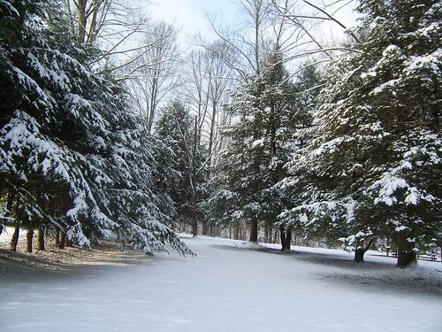 Seasons at HMCA