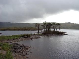 061 Bomen op eilandje in Loch Assynt