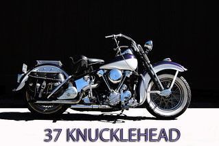 37 KNUCKLEHEAD DSCN1985 copy | by 37KNUCKLEHEAD