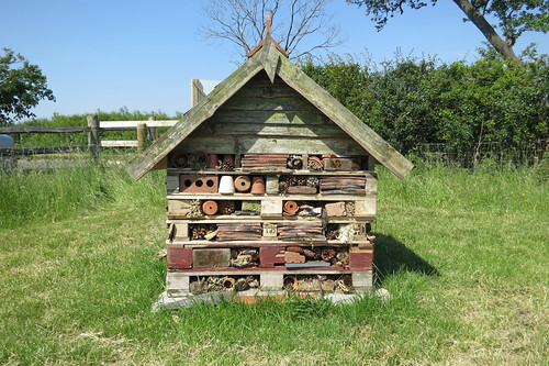 natural burial meadow made up of pallets and odds and ends flickr. Black Bedroom Furniture Sets. Home Design Ideas