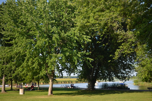 Chain O Lakes Wi Boating Tours