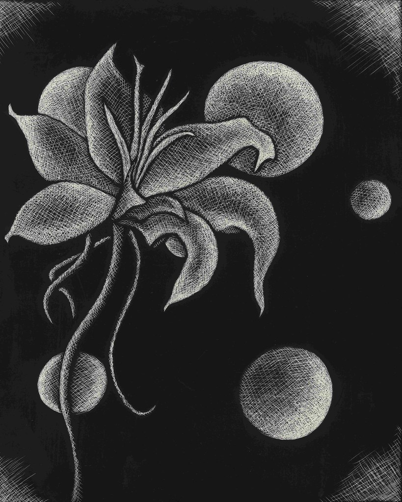 Flowers And Moons Orignal Scratch