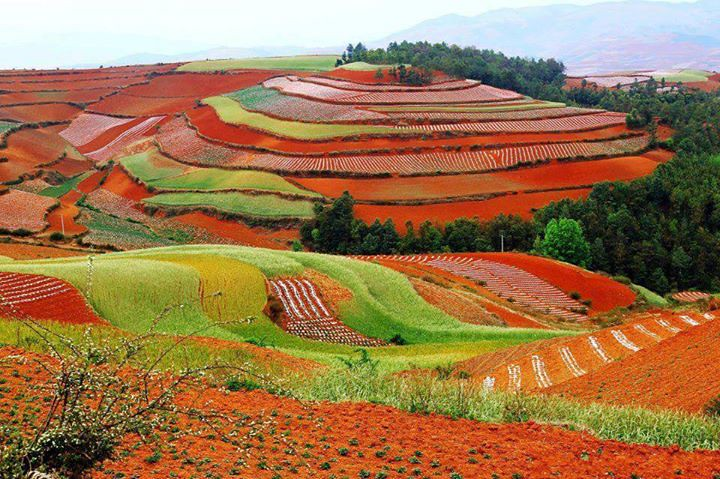 dongchuan red land china