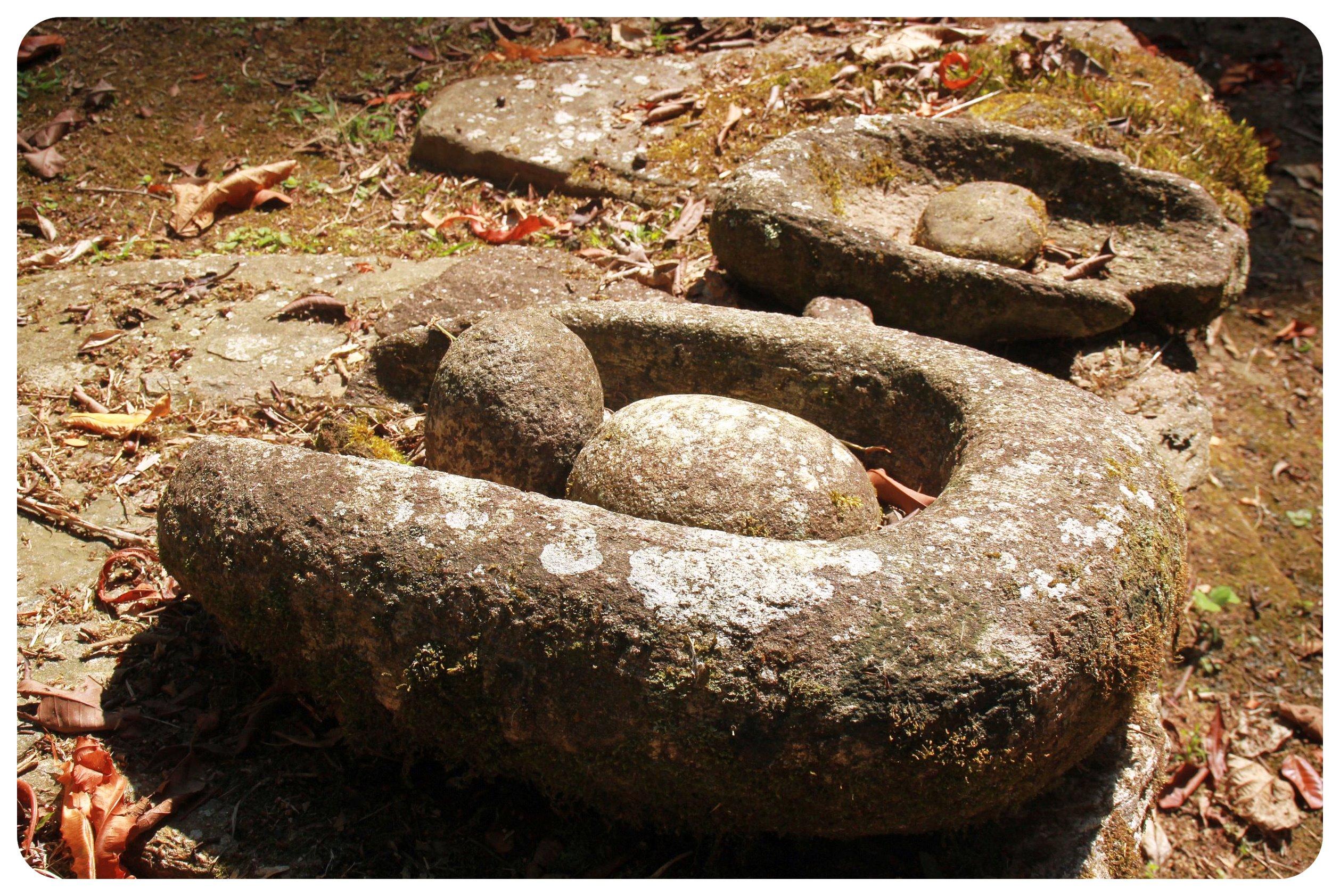 ciudad perdida colombia carved stones