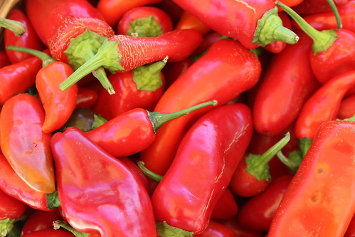 Hot Peppers | by Mike Roush Photography - Berks Awhile